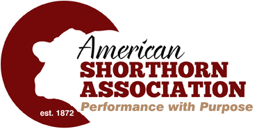 American Shorthorn Association